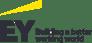 partner-logos_ey